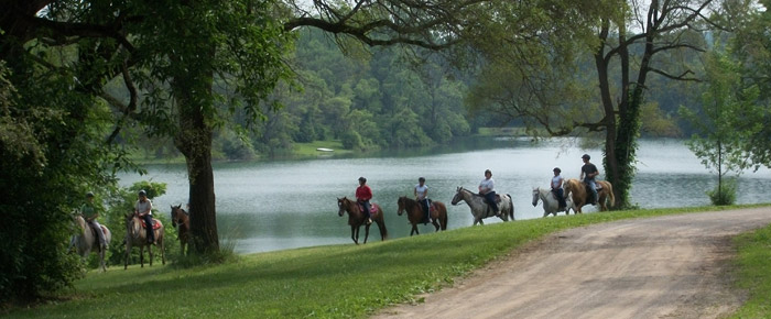 teens horseback riding through trails at New Creations